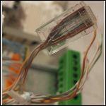 Un connecteur réseau serti, et un autre non encore serti en arrière-plan