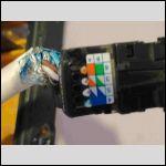 Photo 1 cable prise RJ45